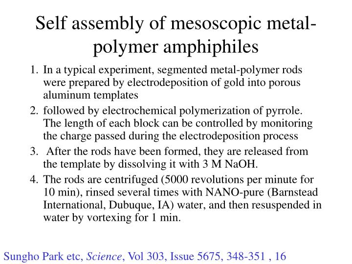 Self assembly of mesoscopic metal-polymer amphiphiles