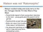 watson was not ratomorphic