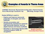 examples of awards in theme areas