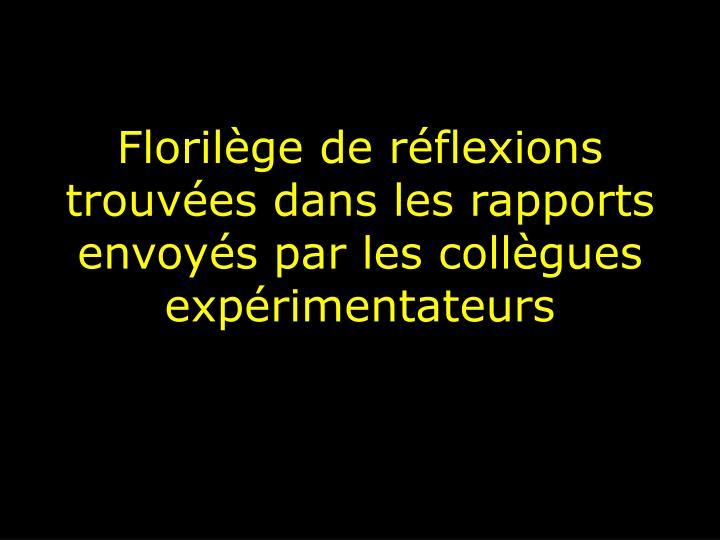 Florilège de réflexions trouvées dans les rapports envoyés par les collègues expérimentateurs