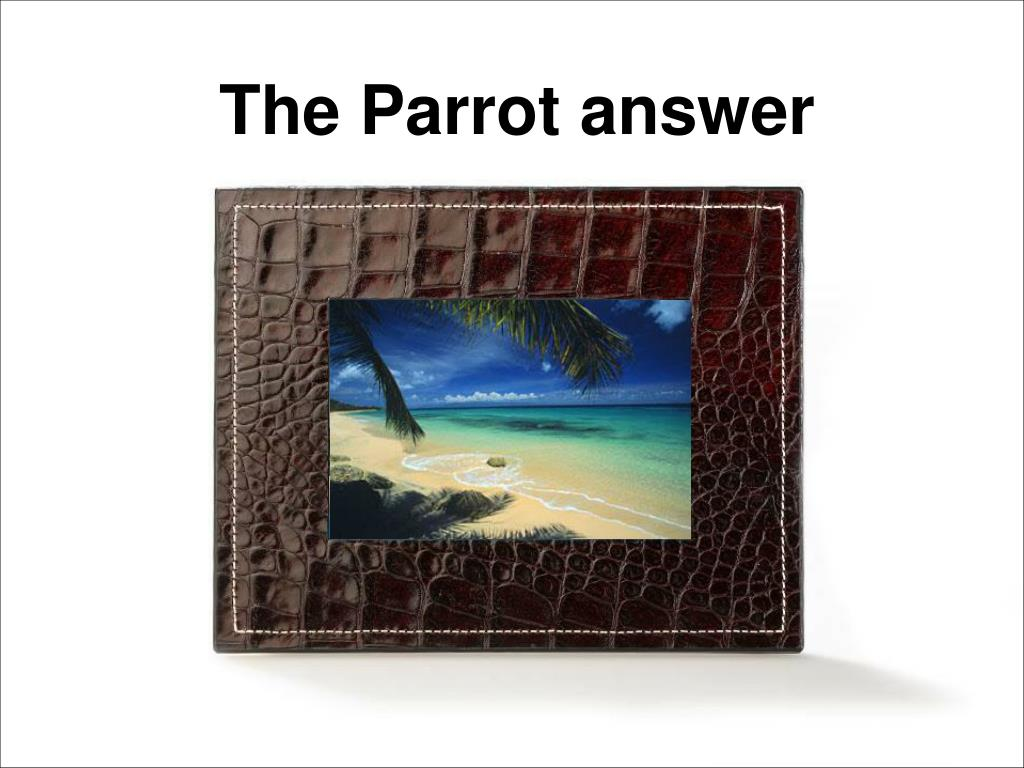 The Parrot answer