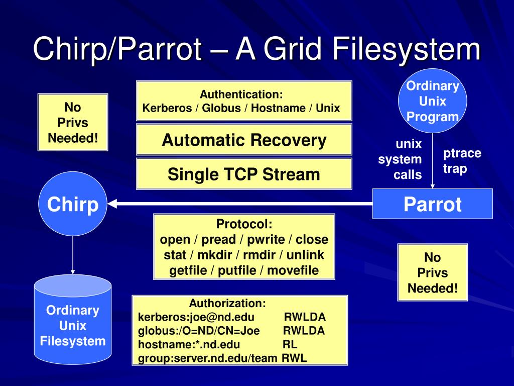 Chirp/Parrot – A Grid Filesystem