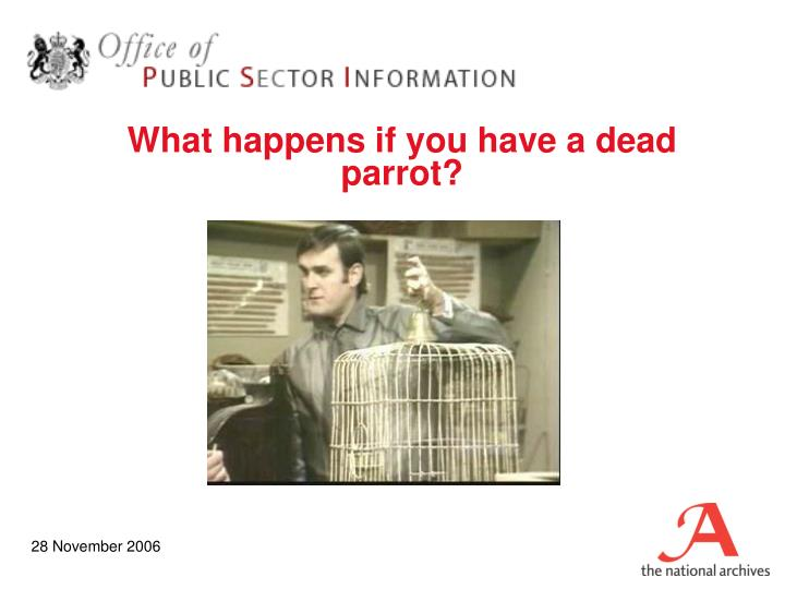 What happens if you have a dead parrot