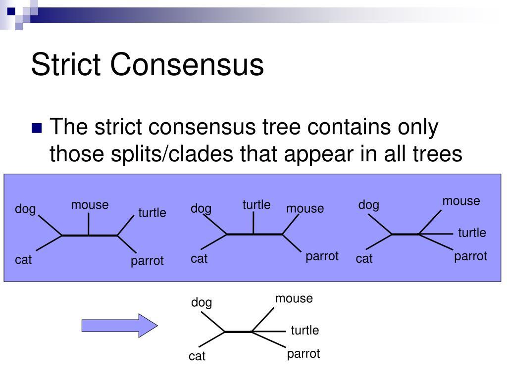 Strict Consensus