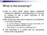 what is the bootstrap