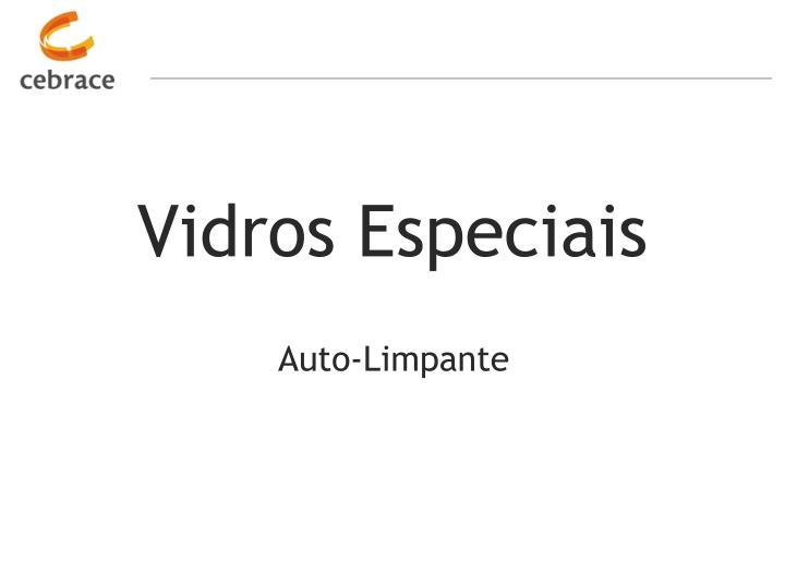 Vidros Especiais
