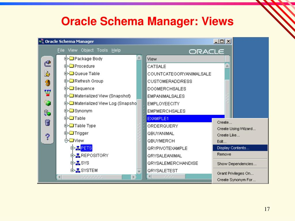 Oracle Schema Manager: Views