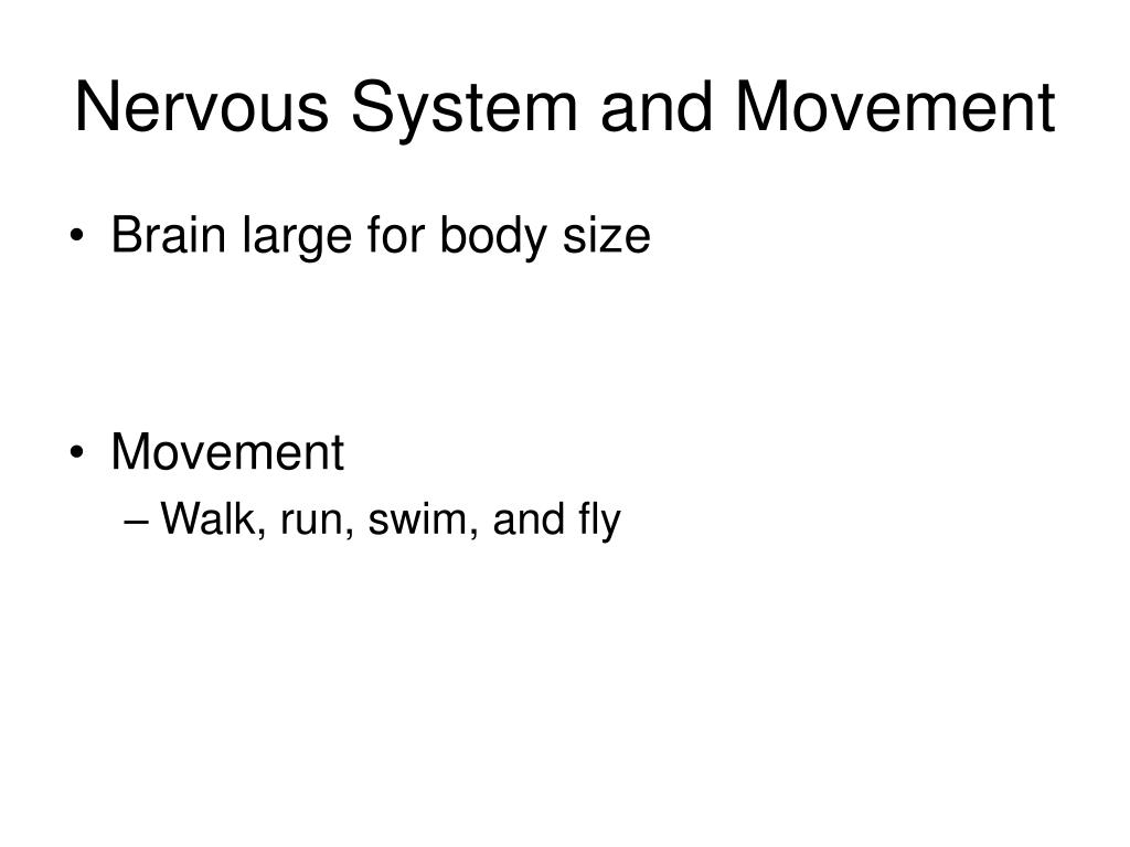 Nervous System and Movement