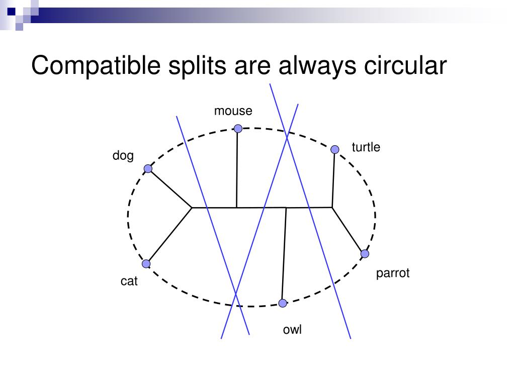 Compatible splits are always circular