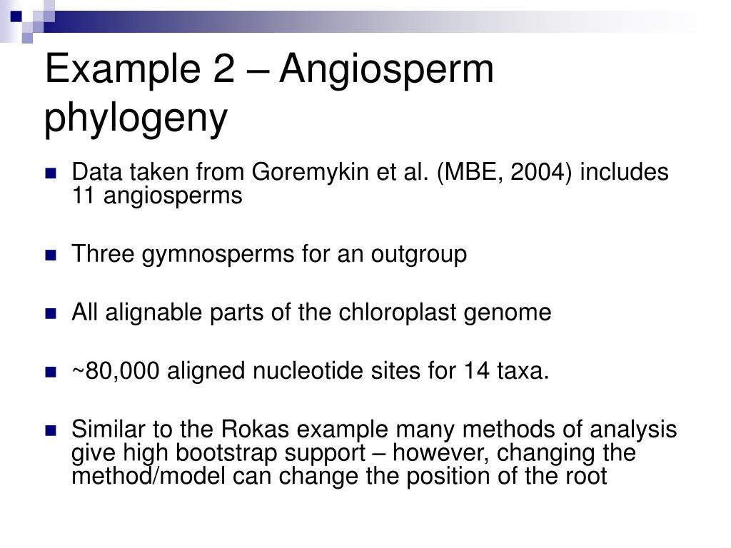 Example 2 – Angiosperm phylogeny