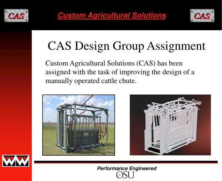 CAS Design Group Assignment