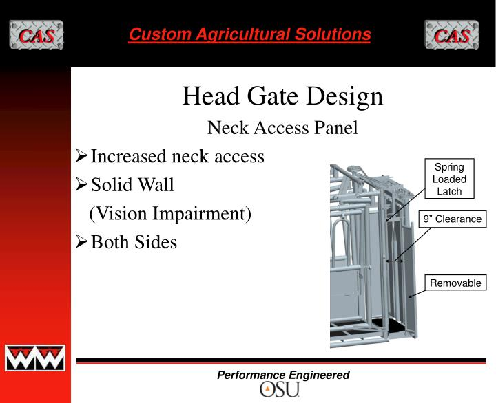 Neck Access Panel