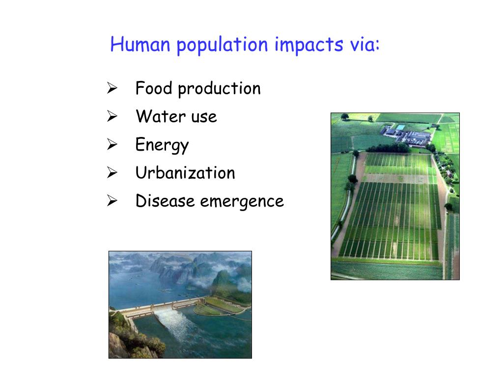 Human population impacts via: