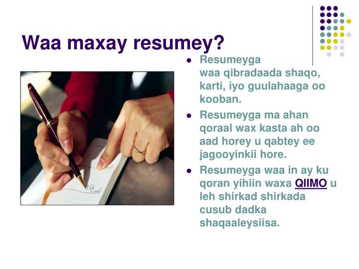 Waa maxay resumey?