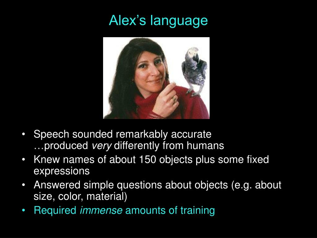 Alex's language