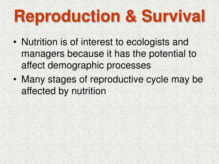 Reproduction survival l.jpg