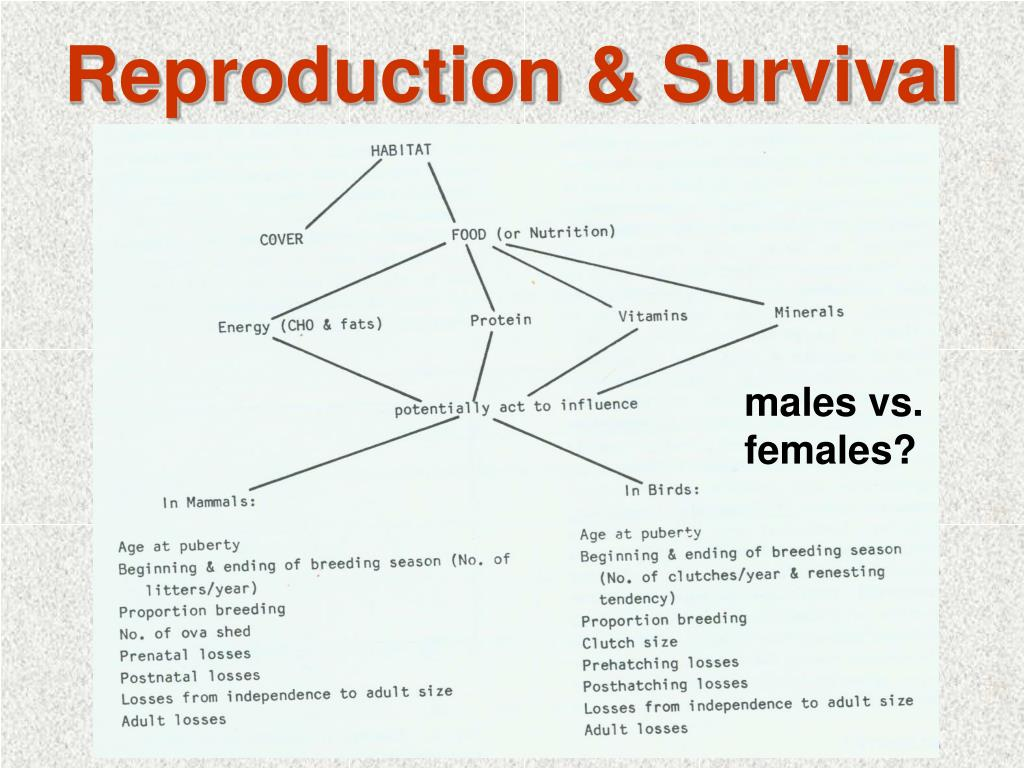 Reproduction & Survival