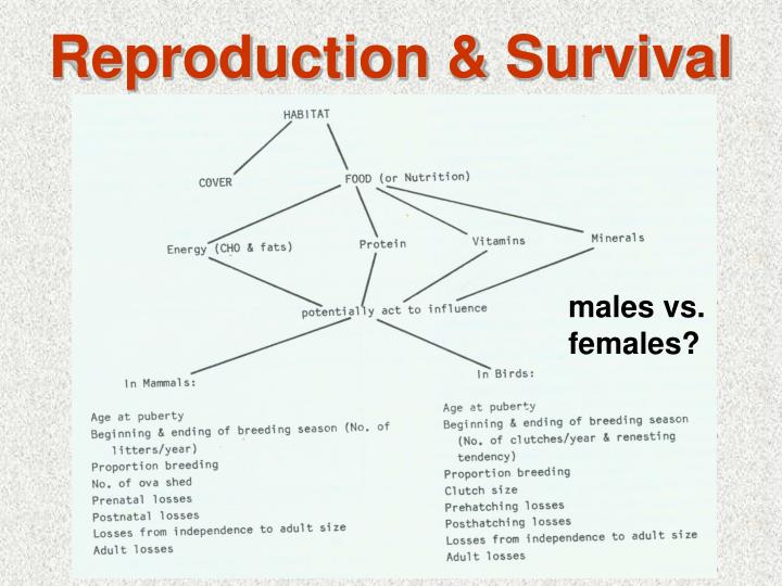 Reproduction survival3