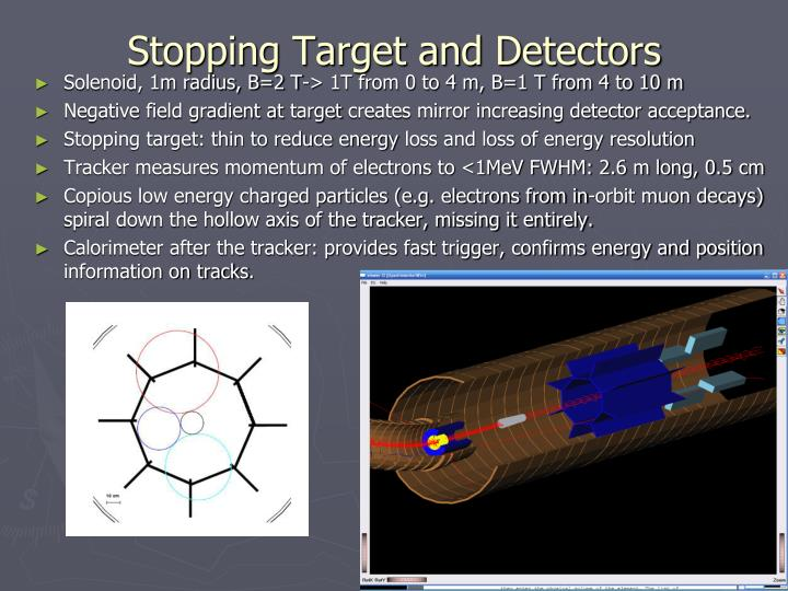 Stopping Target and Detectors