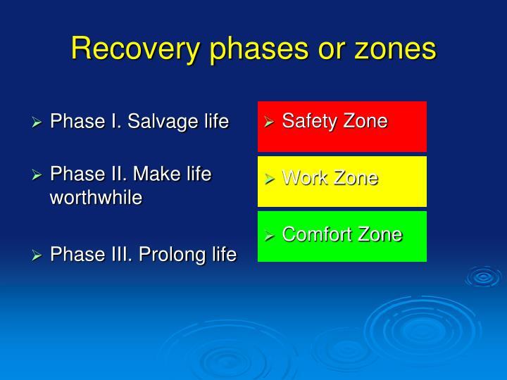 Phase I. Salvage life