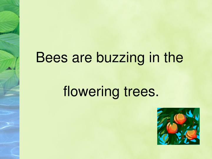 Bees are buzzing in the
