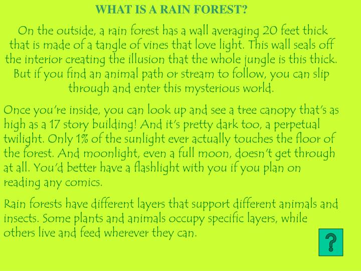 WHAT IS A RAIN FOREST?