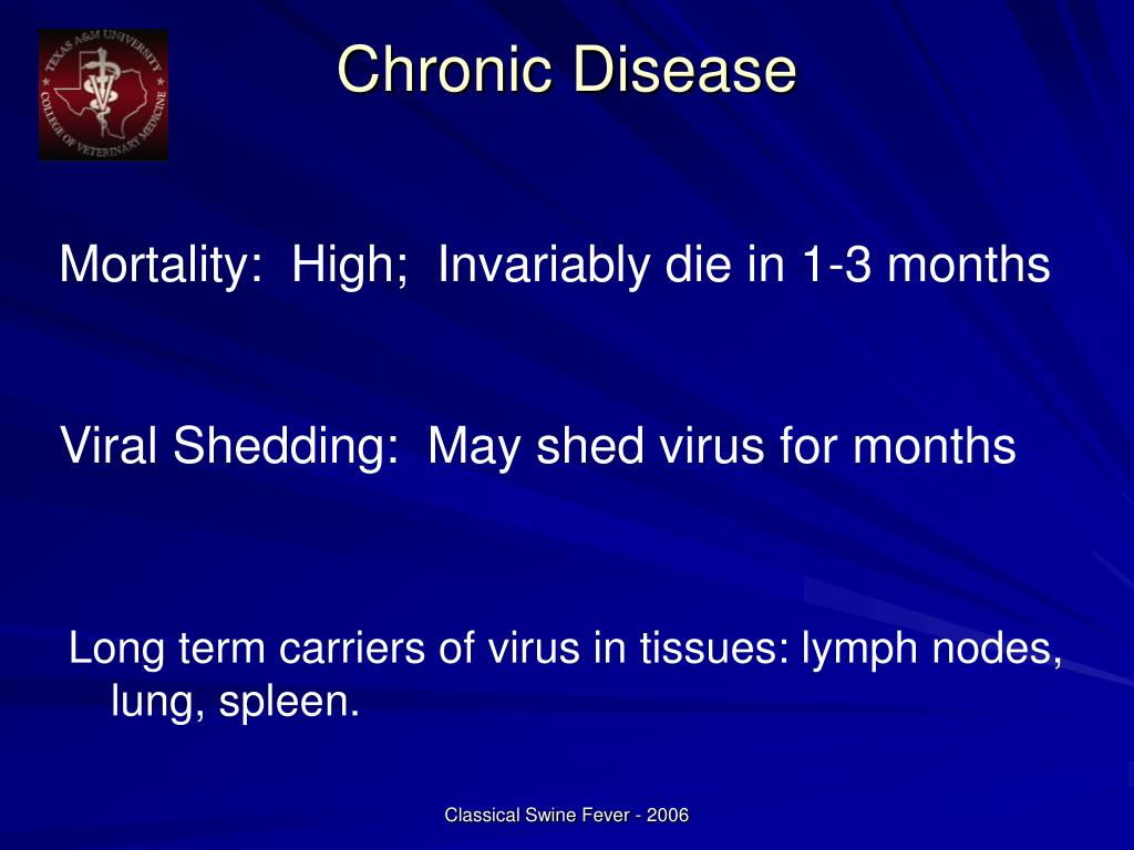 Long term carriers of virus in tissues: lymph nodes, lung, spleen.