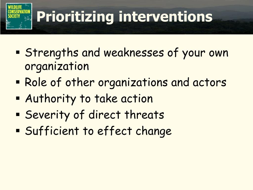 Prioritizing interventions