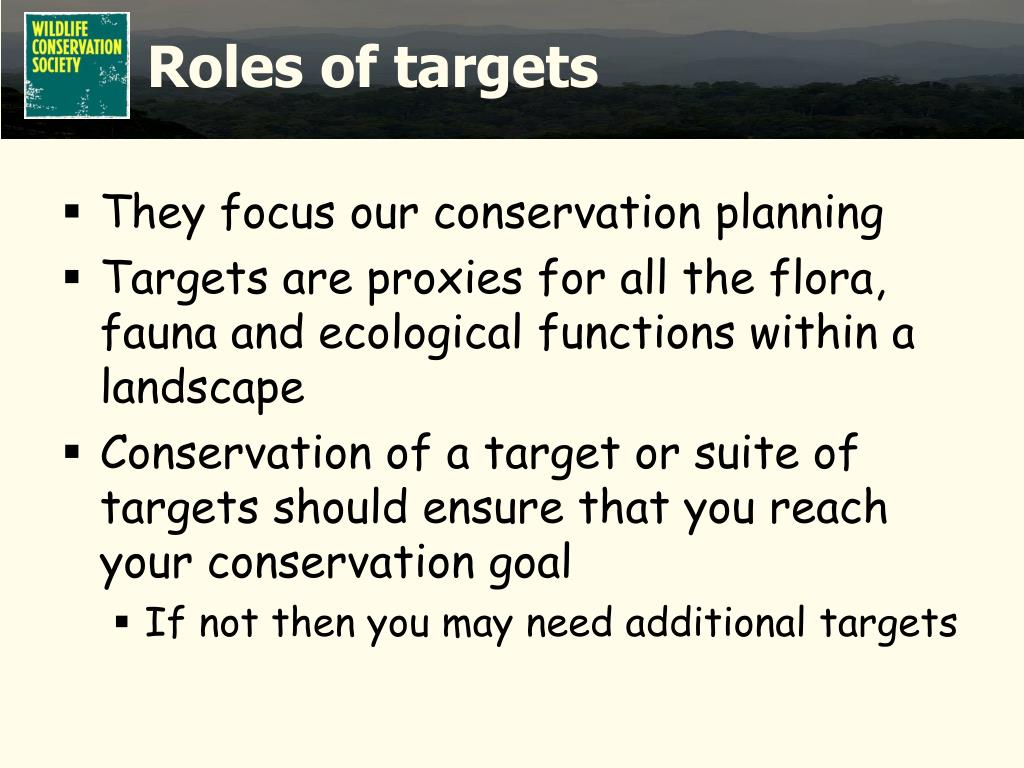 Roles of targets