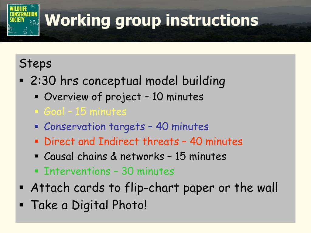 Working group instructions