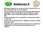 rainforests ii