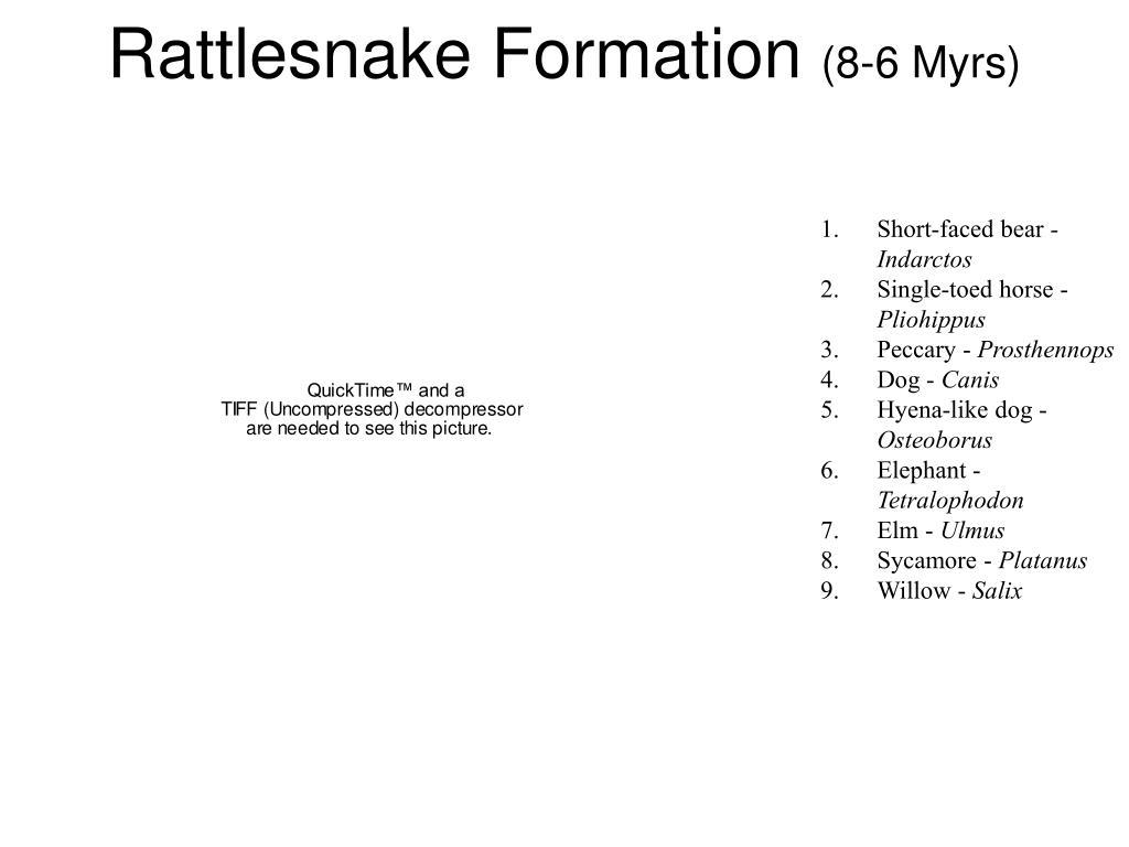 Rattlesnake Formation