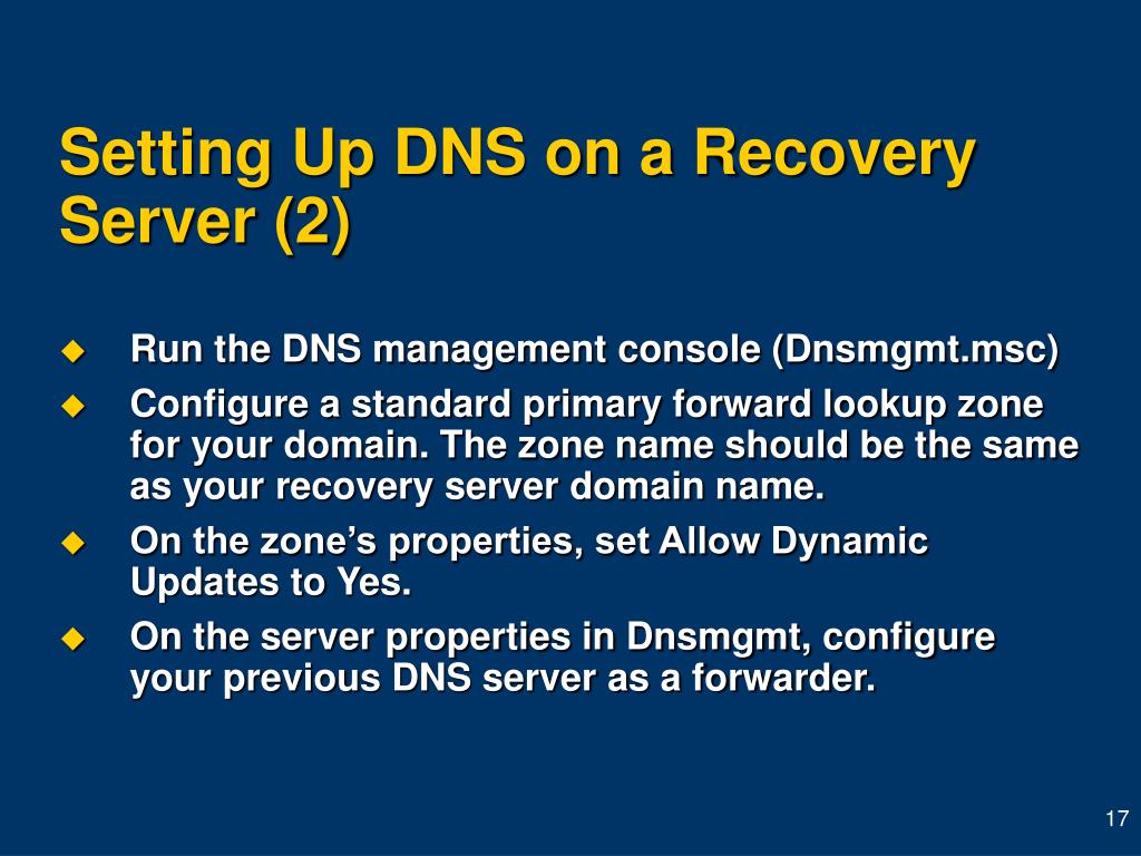 Setting Up DNS on a Recovery Server (2)