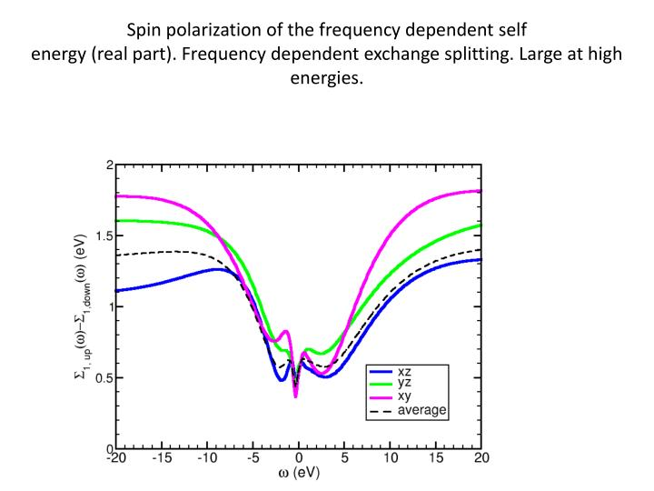 Spin polarization of the frequency dependent self