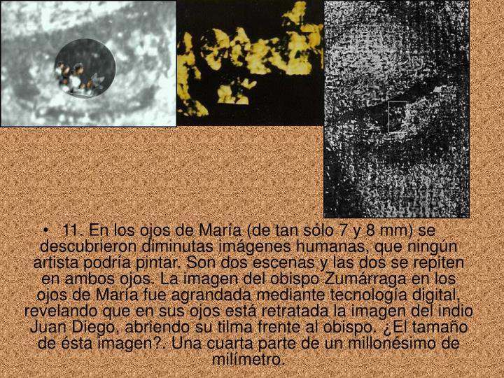 11. En los ojos de María (de tan sólo 7 y 8 mm) se descubrieron diminutas imágenes humanas, que ningún artista podría pintar. Son dos escenas y las dos se repiten en ambos ojos. La imagen del obispo Zumárraga en los ojos de María fue agrandada mediante tecnología digital, revelando que en sus ojos está retratada la imagen del indio Juan Diego, abriendo su tilma frente al obispo. ¿El tamaño de ésta imagen?. Una cuarta parte de un millonésimo de milímetro.