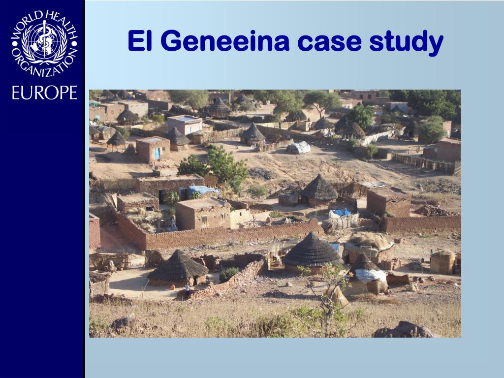 El Geneeina case study