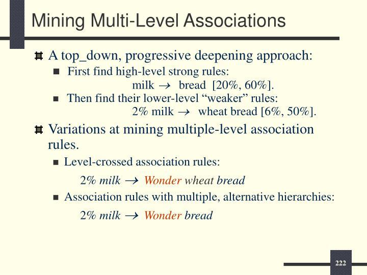 Mining Multi-Level Associations
