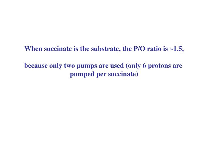 When succinate is the substrate, the P/O ratio is ~1.5,