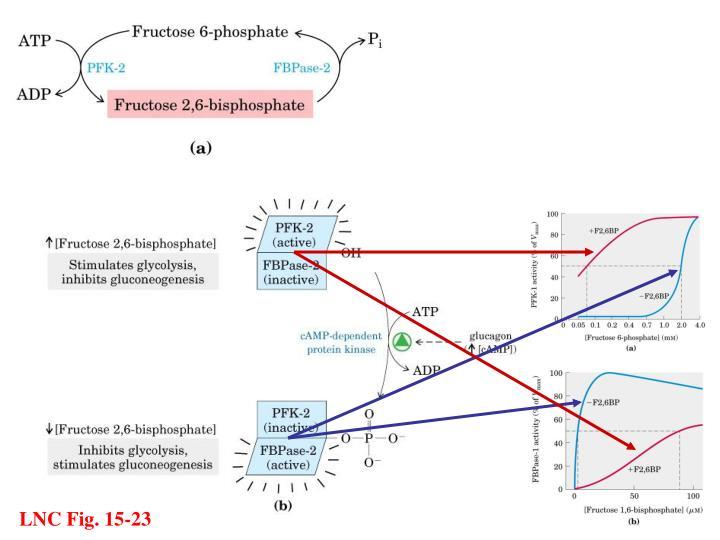 LNC Fig. 15-23