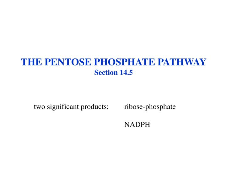 THE PENTOSE PHOSPHATE PATHWAY