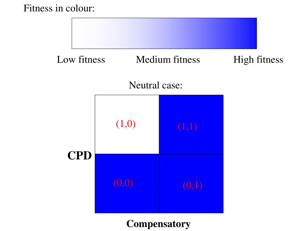 Fitness in colour: