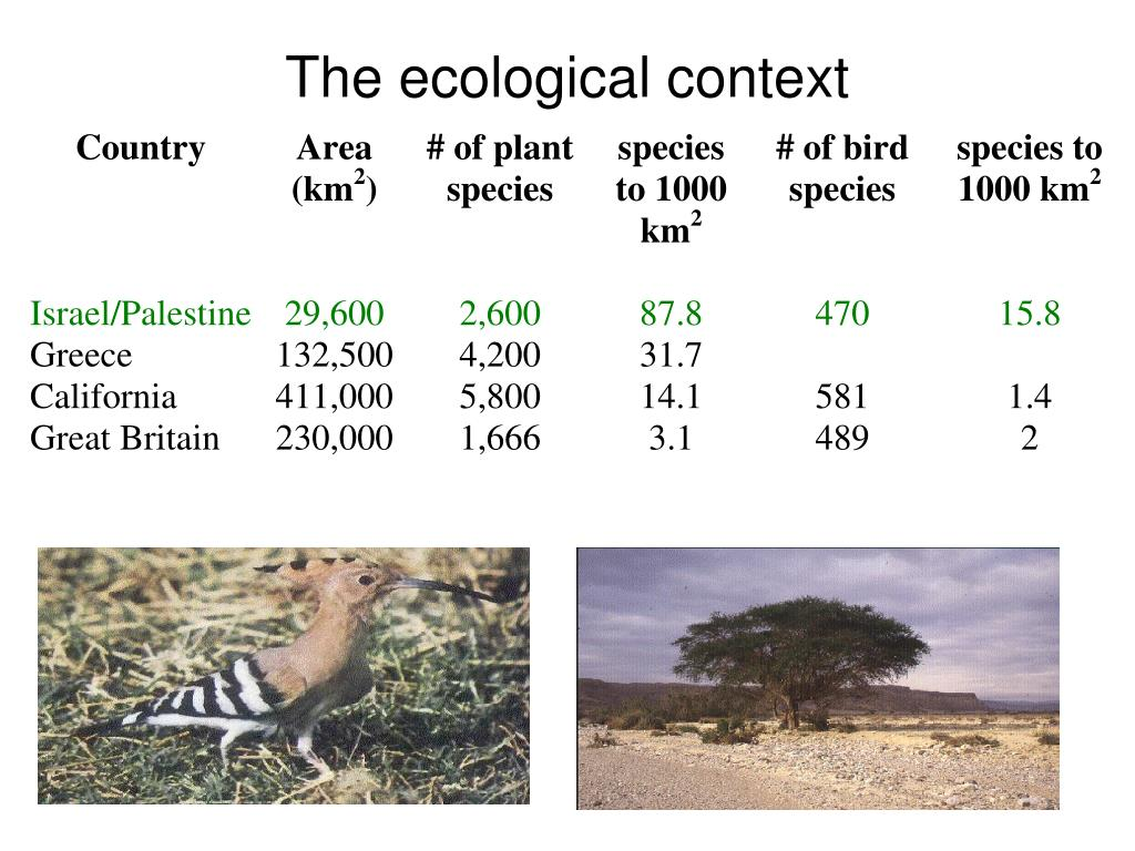 The ecological context