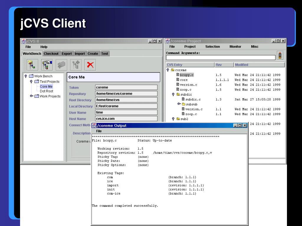 jCVS Client