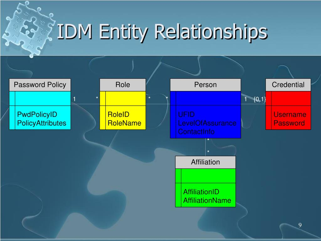 IDM Entity Relationships