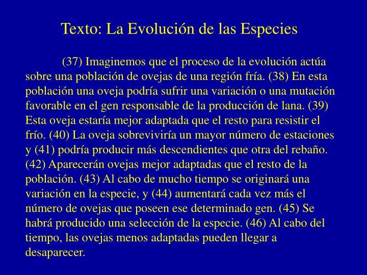Texto: La Evolución de las Especies