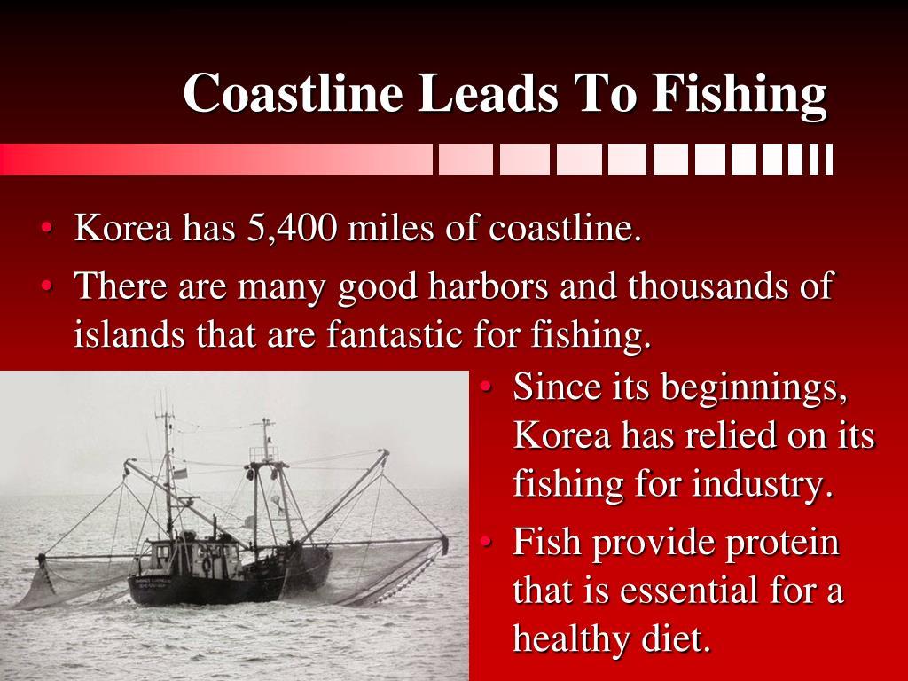 Coastline Leads To Fishing