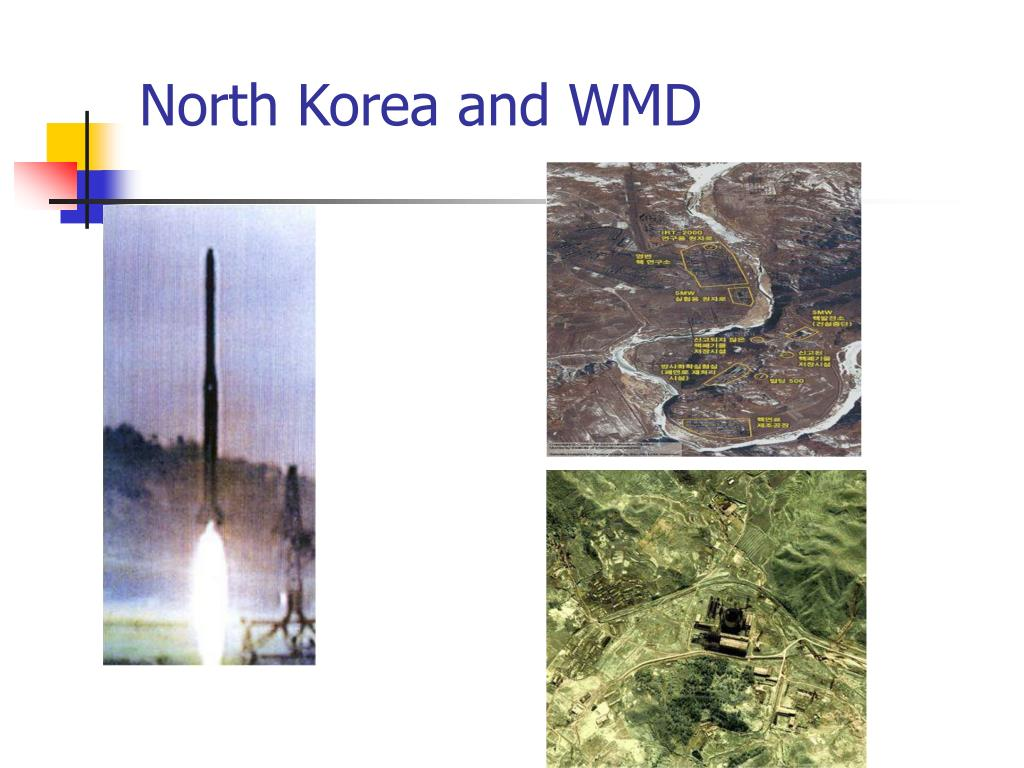 North Korea and WMD