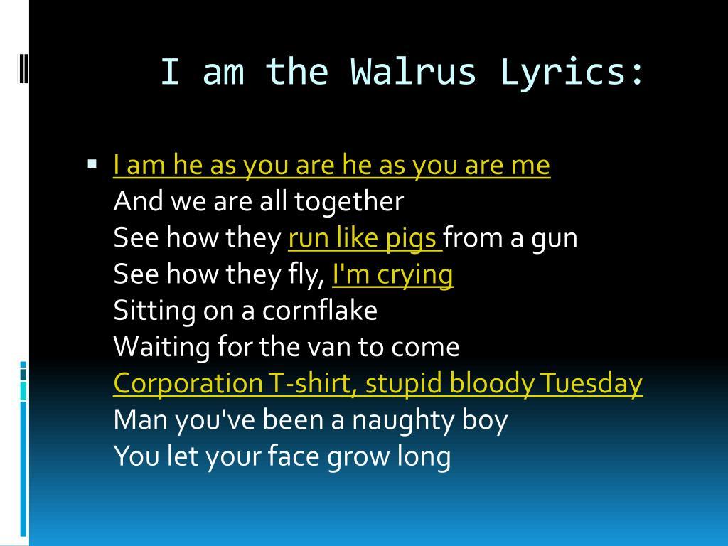 I am the Walrus Lyrics: