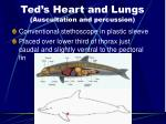 ted s heart and lungs auscultation and percussion