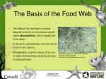 the basis of the food web